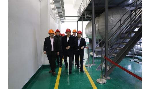 集团公司董事长李抱调研城区冬季保供工作